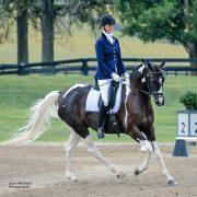 Partner Athlete Ellen Murphy Sporthorses